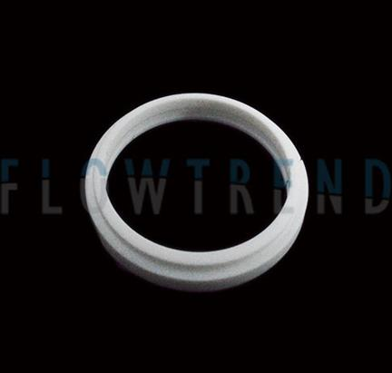 PTFE Guide Ring SLS (75/91-PMO)