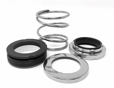 ZCH/ZPH-1.625 Seal Kit C/Cer/FPM
